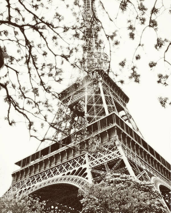 Eiffel Tower Poster featuring the photograph Eiffel Fame by Linde Townsend
