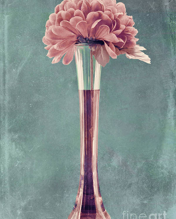still Life Poster featuring the photograph Estillo Vase - S01v4b2t03 by Variance Collections