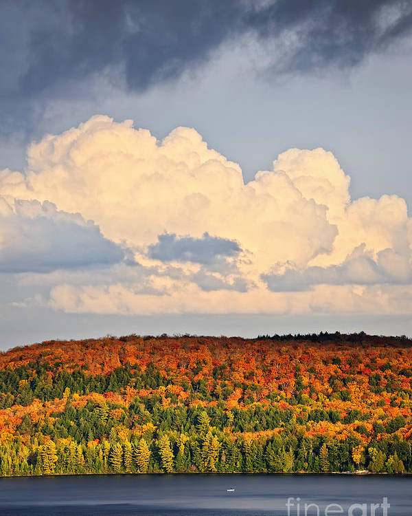 Autumn Poster featuring the photograph Fall Forest And Lake by Elena Elisseeva