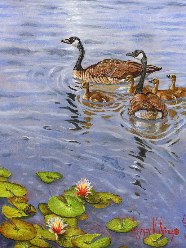 Canadian Geese Poster featuring the painting Family Outing by Jeff Brimley