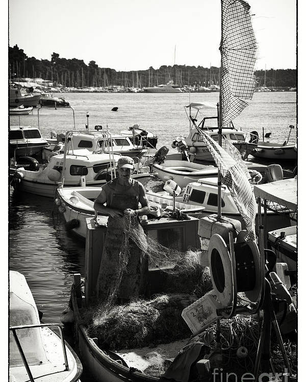 Fisherman Poster featuring the photograph Fisherman by Madeline Ellis