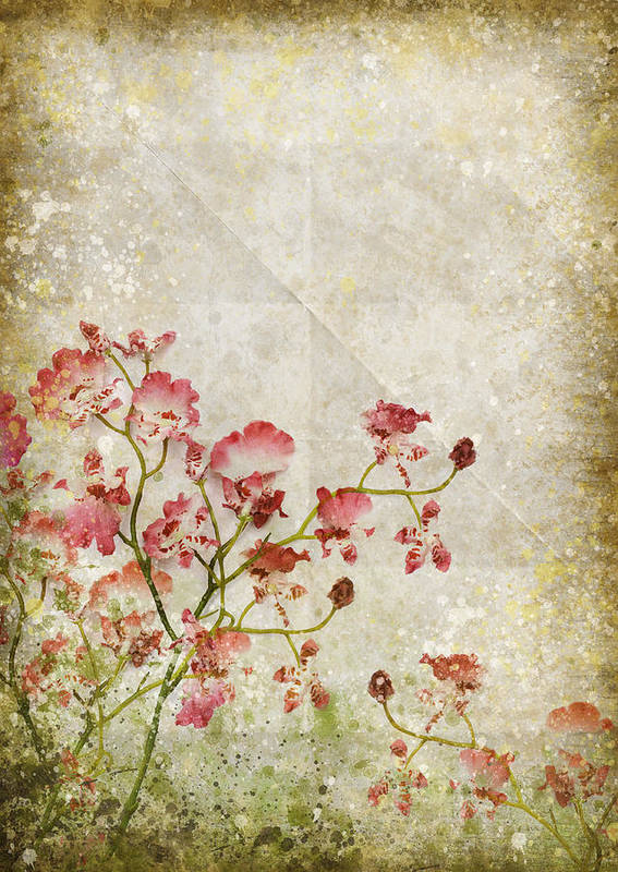 Abstract Poster featuring the photograph Floral Pattern by Setsiri Silapasuwanchai