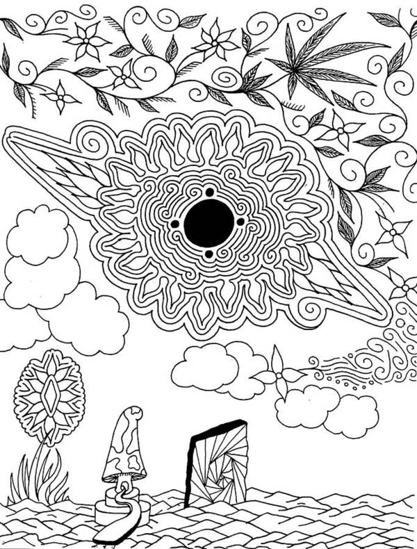 Drawing Poster featuring the drawing Floral Sun by Andrew Padula