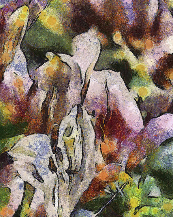Flower Poster featuring the photograph Flower Full Of Color by Trish Tritz