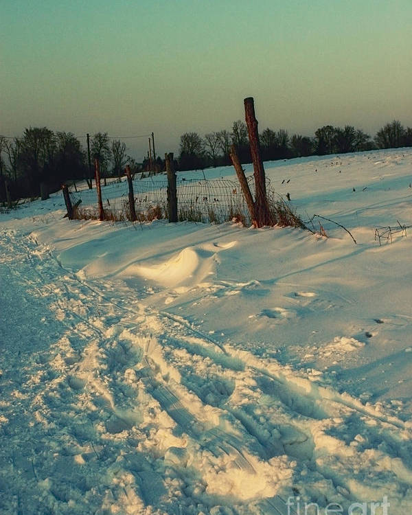 Photo Poster featuring the photograph Footprints In The Snow by Jutta Maria Pusl