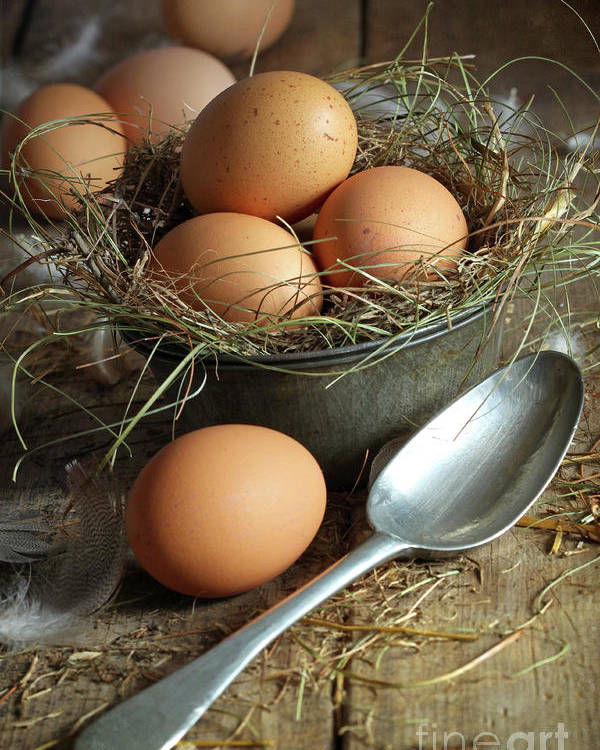 Background Poster featuring the photograph Fresh Brown Eggs In Old Tin Container With Spoon by Sandra Cunningham