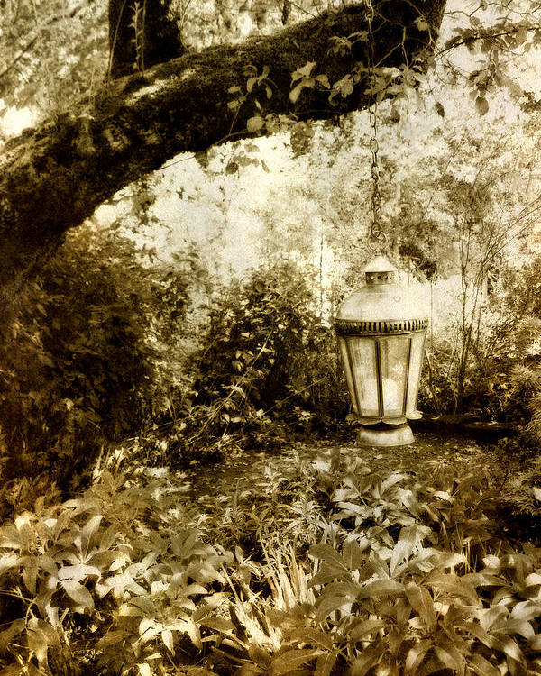 Sepia Poster featuring the photograph Garden Lantern by Bonnie Bruno