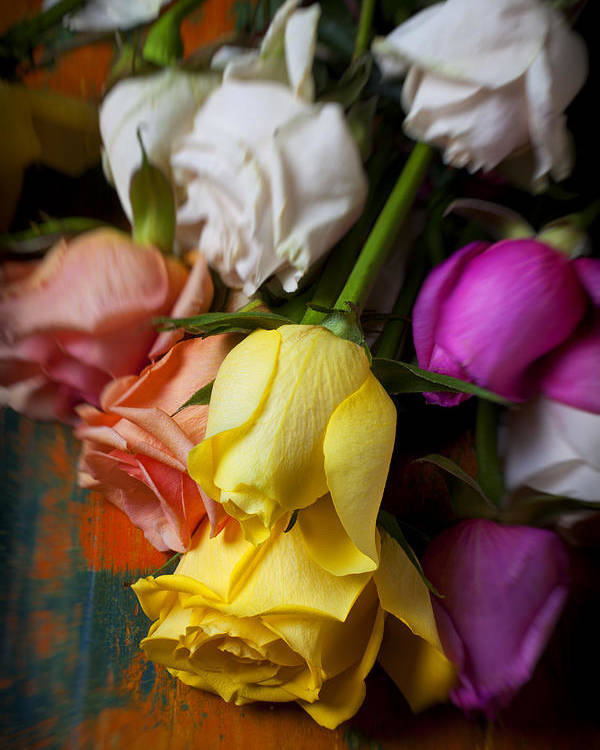 Yellow Poster featuring the photograph Garden Roses by Garry Gay