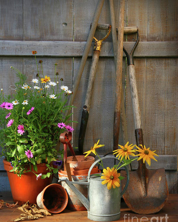 Activity Poster featuring the photograph Garden Shed With Tools And Pots by Sandra Cunningham