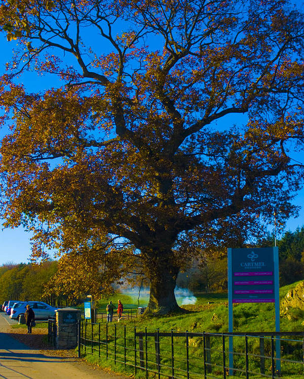 Cartmel Poster featuring the photograph Gateway To Carmel Racecourse by Peter Jenkins