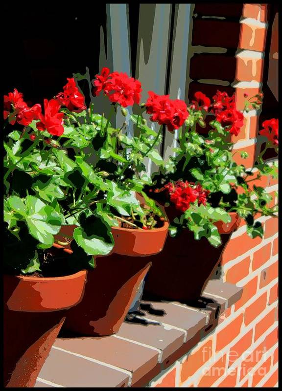 Geraniums Poster featuring the photograph Geraniums In Germany by Carol Groenen