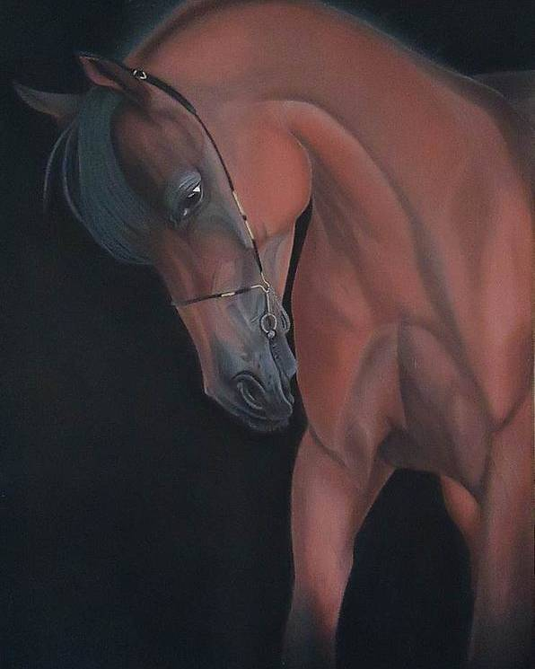 Horse Poster featuring the pastel Glance Of A Horse by Silvia Louro