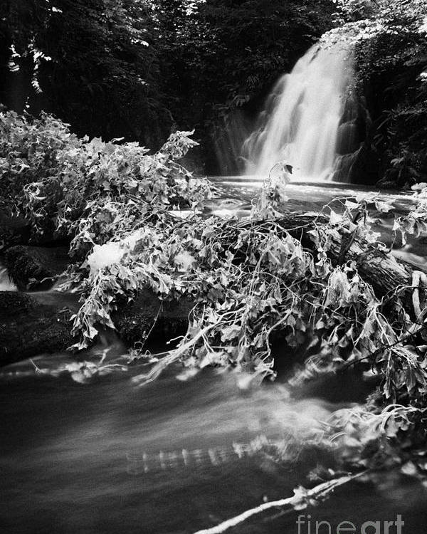 Glenoe Poster featuring the photograph Gleno Or Glenoe Waterfall Beauty Spot County Antrim Northern Ireland by Joe Fox