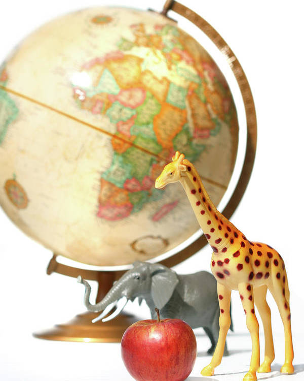 Africa Poster featuring the photograph Globe With Toys Animals On White by Sandra Cunningham