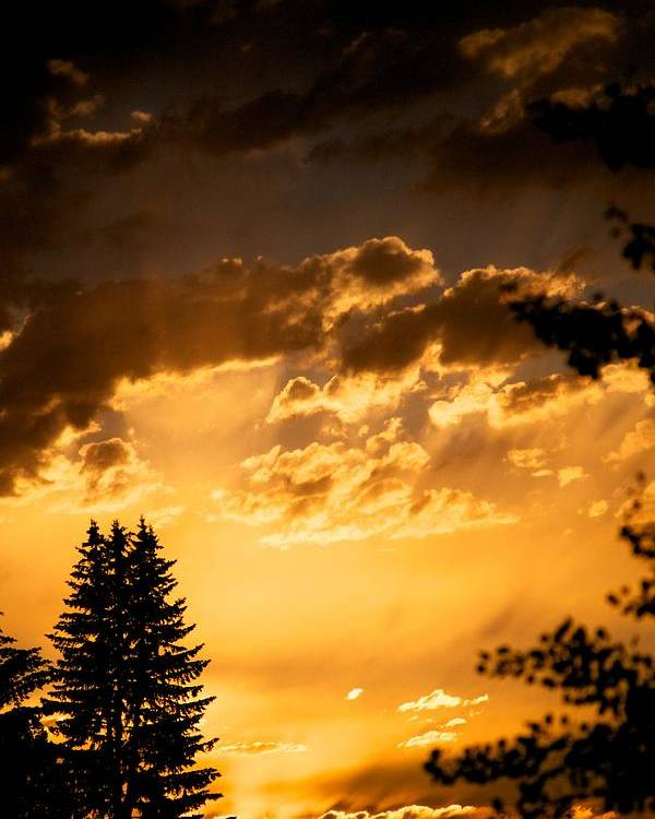 Sunset Poster featuring the photograph Golden Sky by Kevin Bone