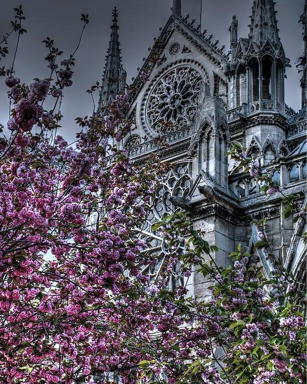 Notre Dame Poster featuring the photograph Gothic Paris by Jennifer Ancker