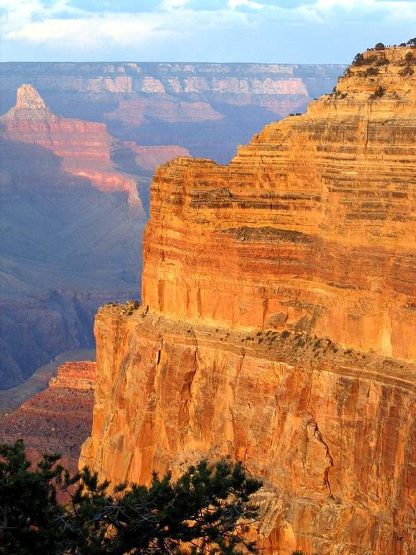 Grand Canyon Poster featuring the photograph Grand Canyon 27 by Will Borden