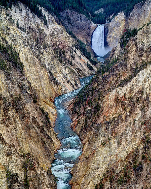Grand Canyon Of Yellowstone. Poster featuring the photograph Grand Canyon Main View by Sue Karski