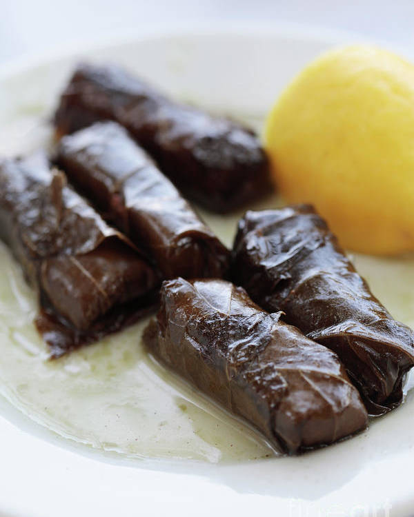 Dolmades Poster featuring the photograph Greek Dolmades by Neil Overy