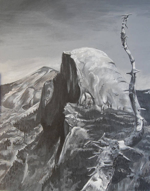Black And White Painting Poster featuring the painting Half Dome Tree by Travis Day