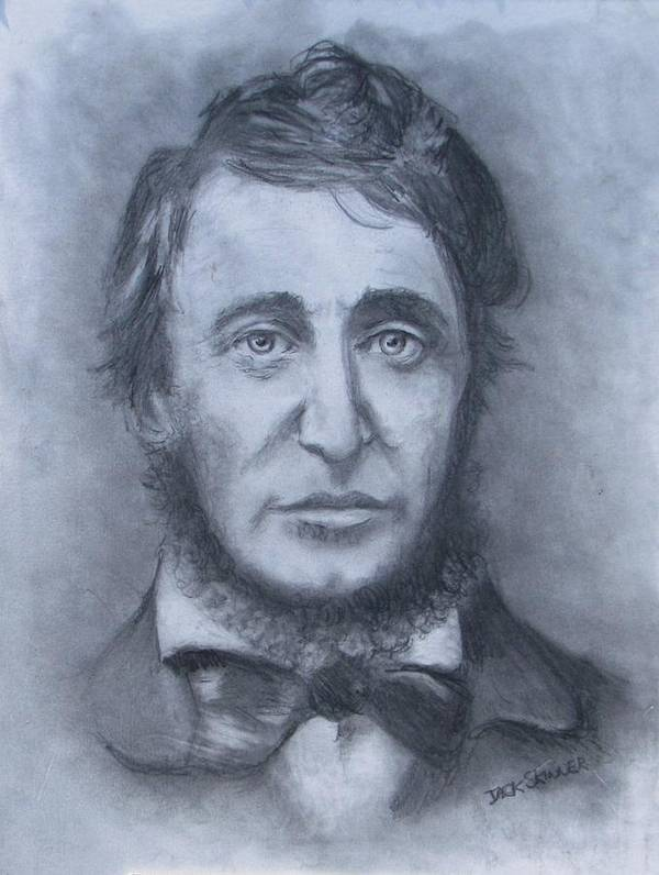 Henry David Thoreau Poster featuring the drawing Henry David Thoreau by Jack Skinner