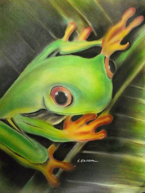 Frog Poster featuring the pastel Here's Lookin' At Ya by Scott Easom