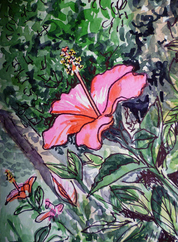 Hibiscus Poster featuring the painting Hibiscus Sketchbook Project Down My Street by Irina Sztukowski