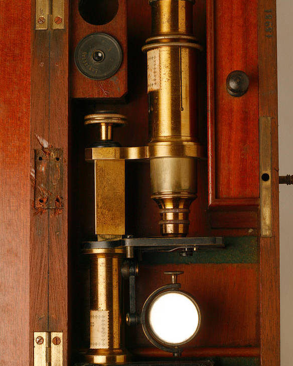 Microscope Poster featuring the photograph Historical Microscope by Mauro Fermariello