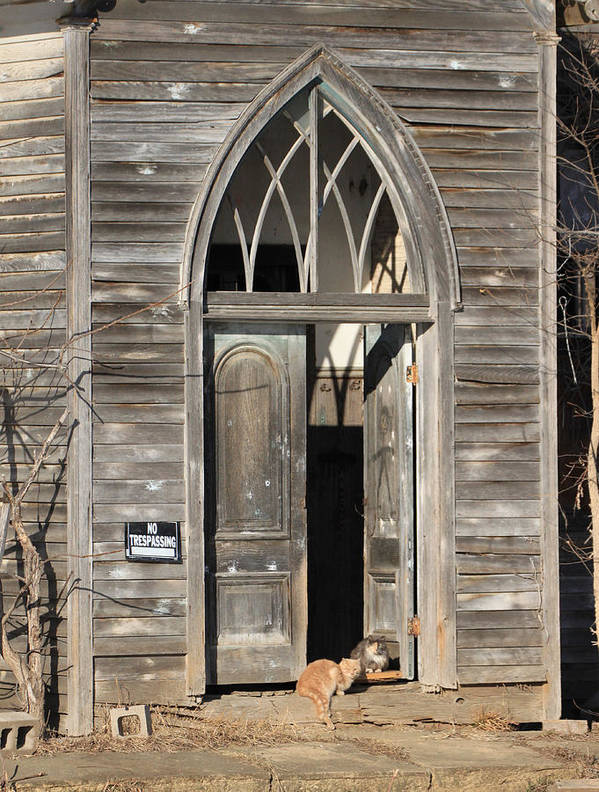 Curious Cats Old Church Holy Kitty Kitten No Trespassing Rustic Abondoned Poster featuring the photograph Holy Haven For Cats by J Laughlin