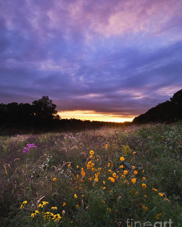 Sun Poster featuring the photograph Hoosier Sunset - D007743 by Daniel Dempster