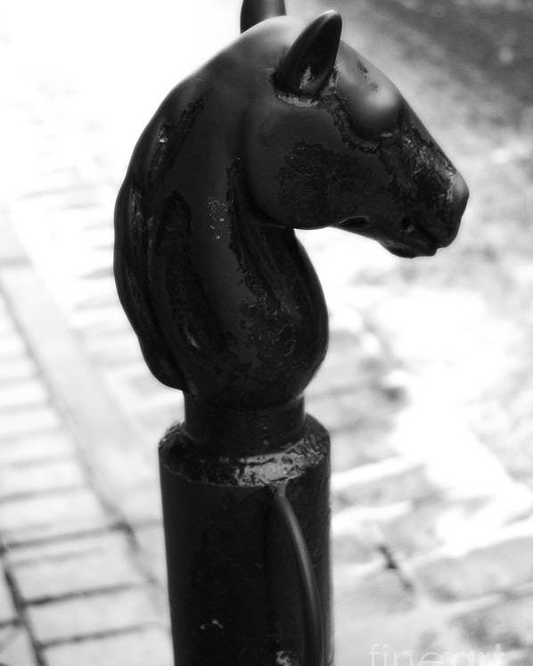 Travelpixpro New Orleans Poster featuring the photograph Horse Head Pole Hitching Post French Quarter New Orleans Black And White Diffuse Glow Digital Art by Shawn O'Brien