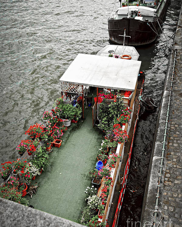 Boat Poster featuring the photograph Houseboats In Paris by Elena Elisseeva