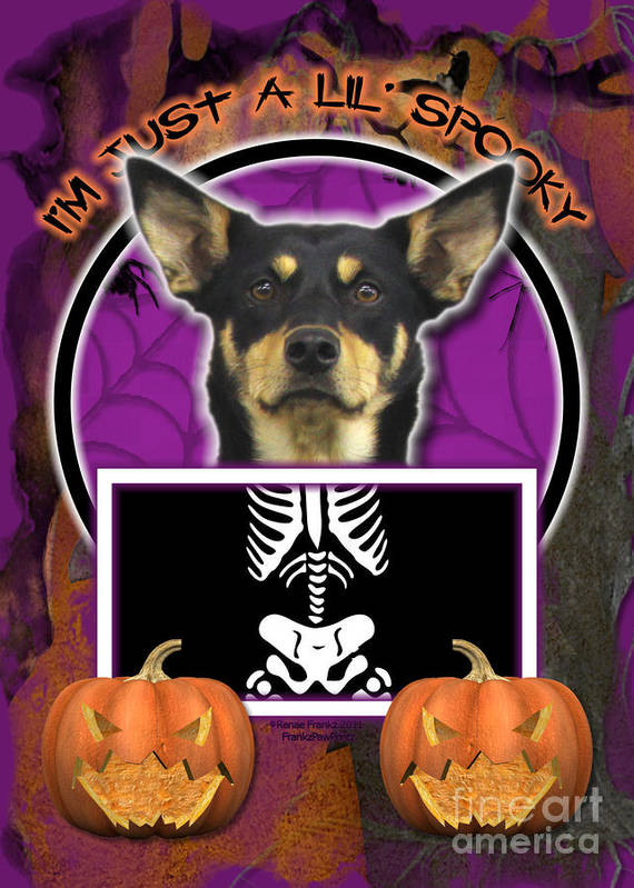 Australian Kelpie Poster featuring the digital art I'm Just A Lil' Spooky Australian Kelpie by Renae Laughner