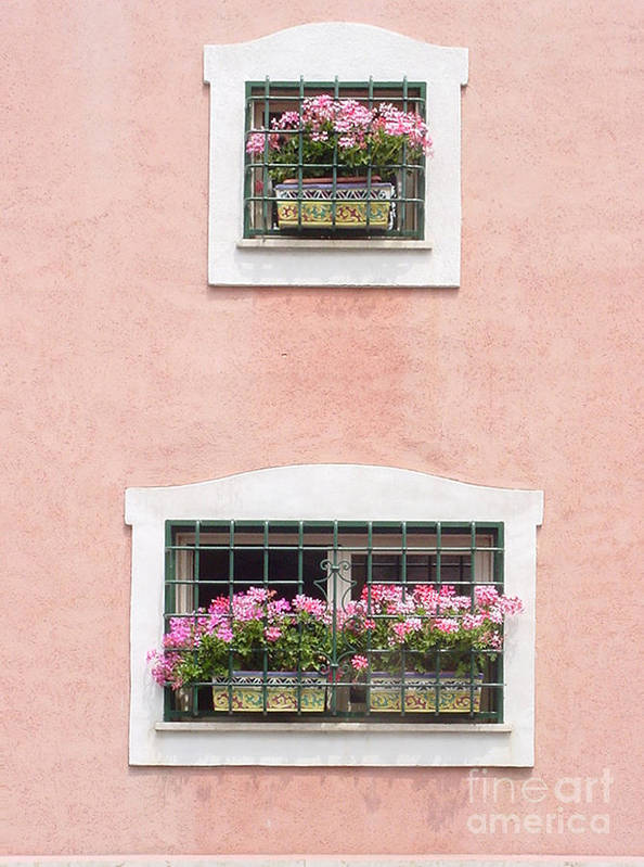 Italy Poster featuring the photograph Ischia Windows by Daniela Di Giuliomaria-Giangrande