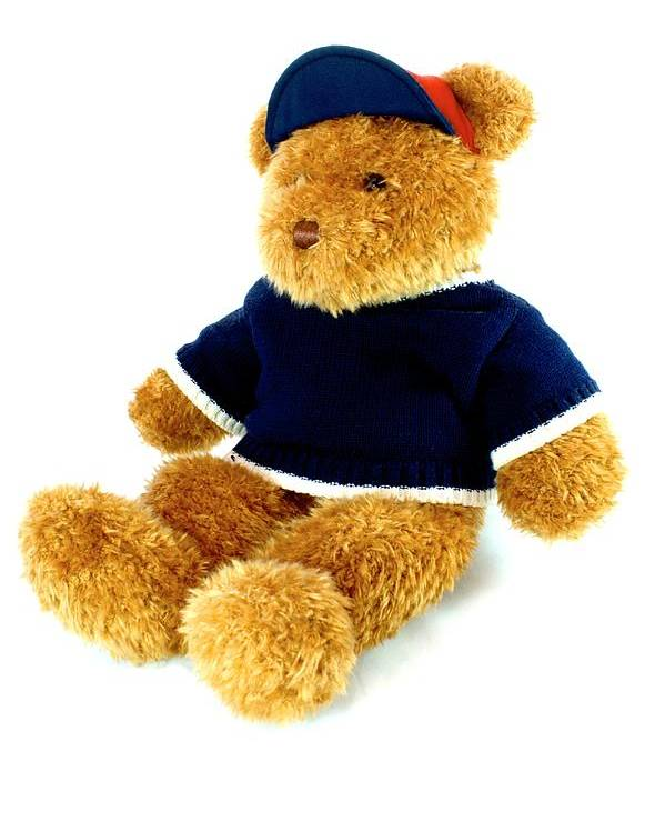 Childhood Poster featuring the photograph Isolated Teddy Bear by Lynnette Johns