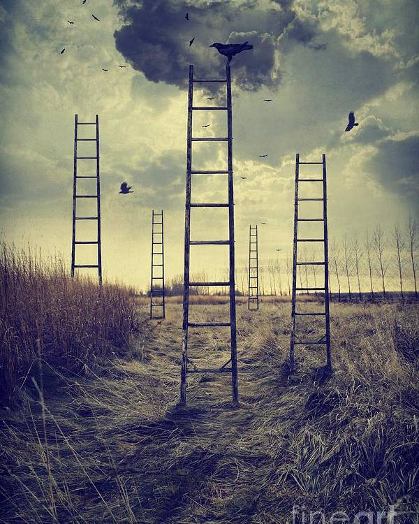 Atmosphere Poster featuring the photograph Ladders Reaching To The Sky In A Autumn Field by Sandra Cunningham
