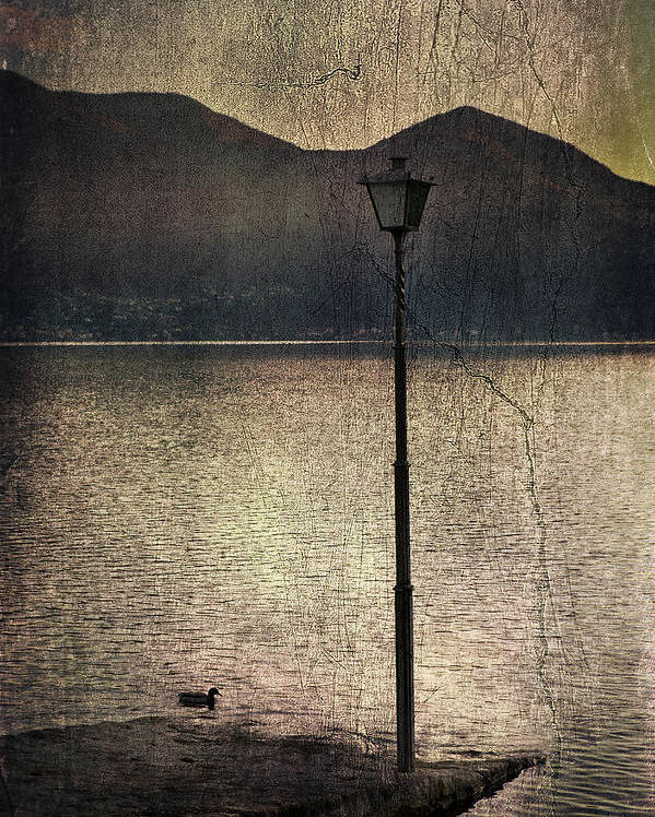 Lantern Poster featuring the photograph Lantern At The Lake by Joana Kruse