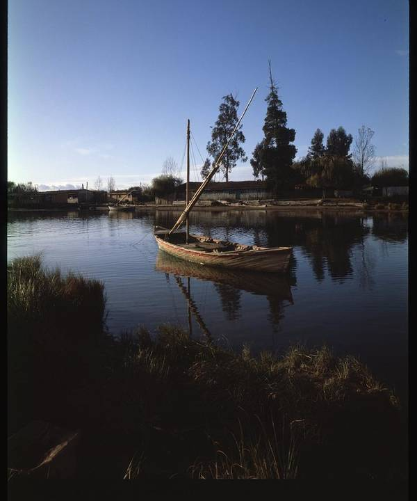 Poster featuring the photograph Laraquete Fishing Village In Chile by Thomas D McManus