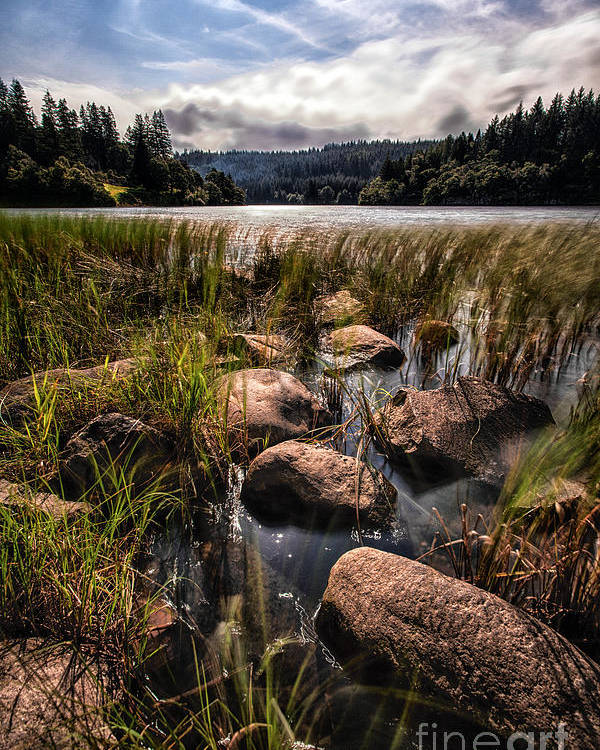 Trossachs National Park Poster featuring the photograph Loch Ard From The Reed Beds by John Farnan