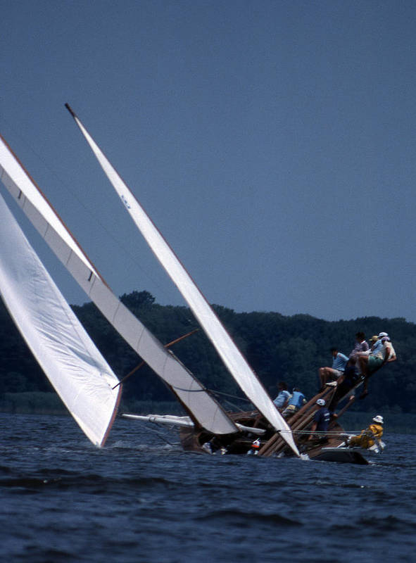 Sailboat Poster featuring the photograph Log Canoe Race by Skip Willits