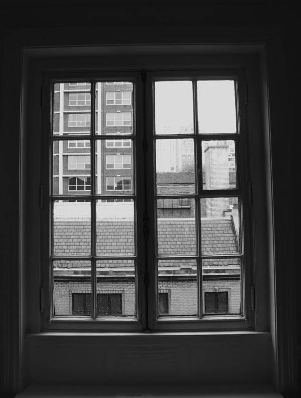 Window Poster featuring the photograph Lots Of Lines by Anna Villarreal Garbis