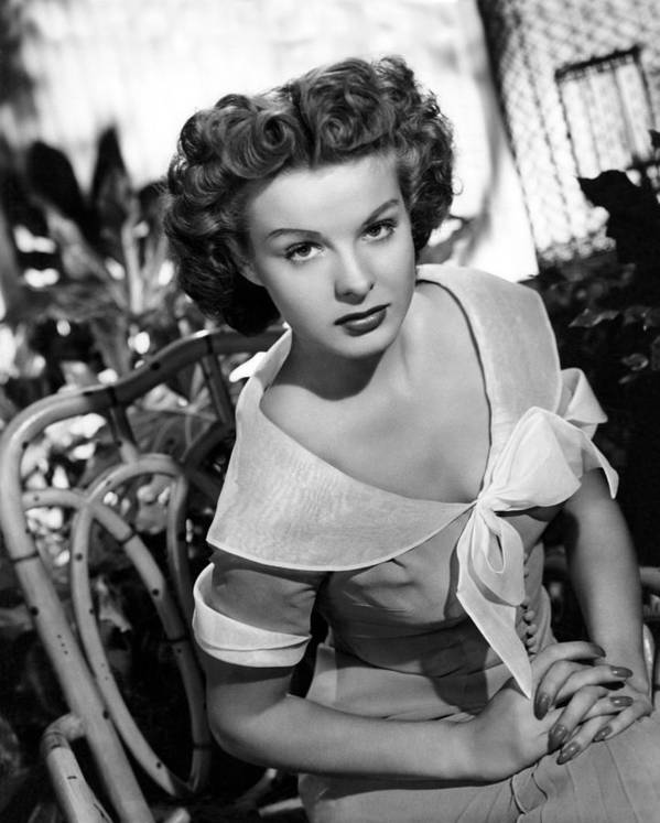 11x14lg Poster featuring the photograph Love That Brute, Jean Peters, 1950 by Everett
