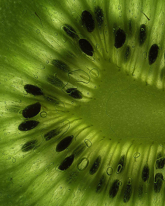 Kiwi Poster featuring the photograph Macro Kiwi Slice by Janeen Wassink Searles