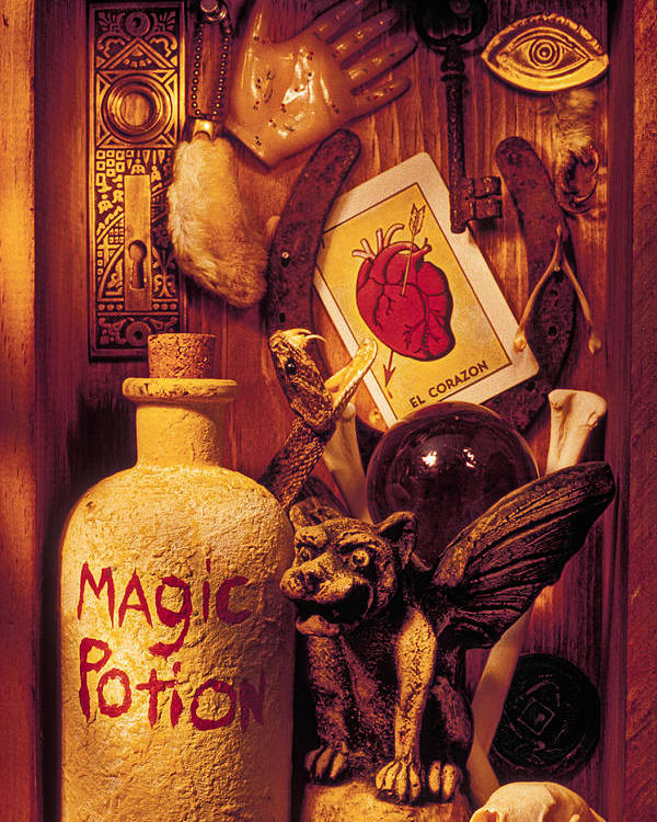 Magic Poster featuring the photograph Magic Things by Garry Gay