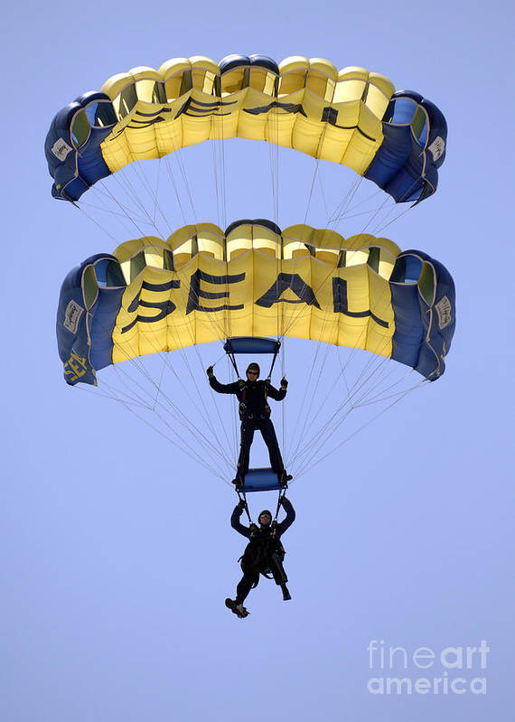 Blue Poster featuring the photograph Members Of The U.s. Navy Parachute by Stocktrek Images