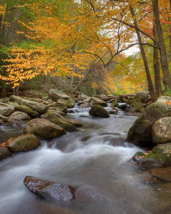 Great Smoky Mountains Poster featuring the photograph Mid Stream II by Charles Warren