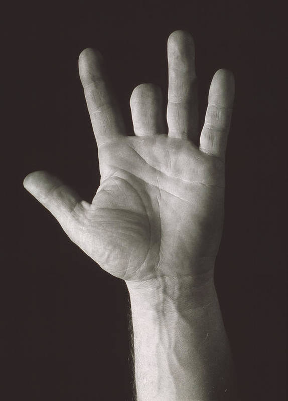 Finger Poster featuring the photograph Missing Middle Finger by Alan Sirulnikoff