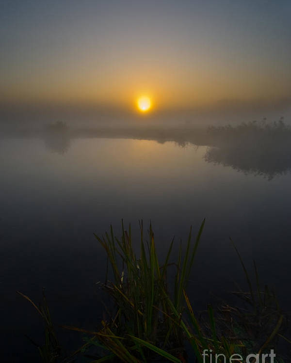 Yhun Suarez Poster featuring the photograph Misty Dawn 5.0 by Yhun Suarez