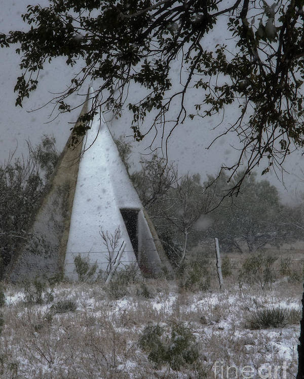 Shed Poster featuring the photograph Modern Tepee by Fred Lassmann