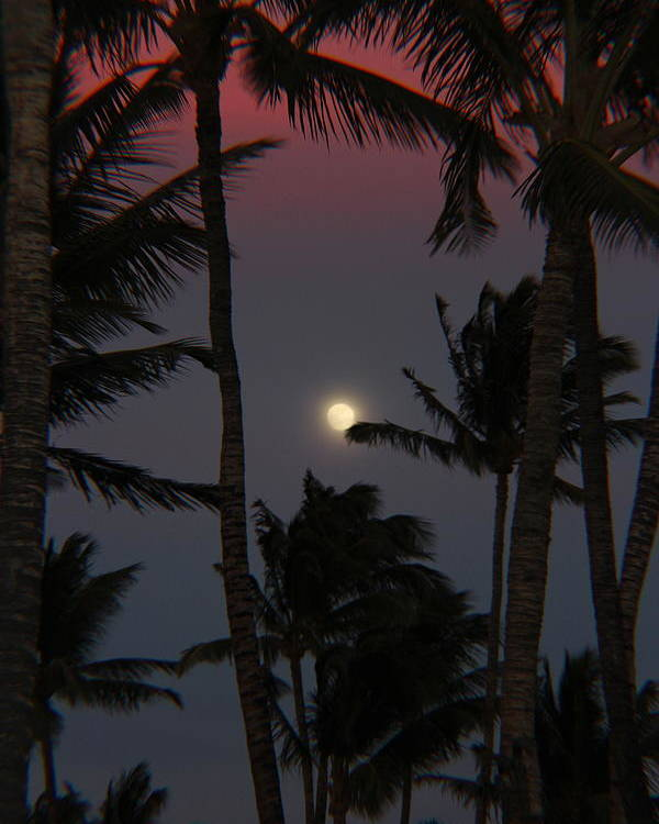 Full Moon Poster featuring the photograph Moon Over Hawaii by Raquel Amaral